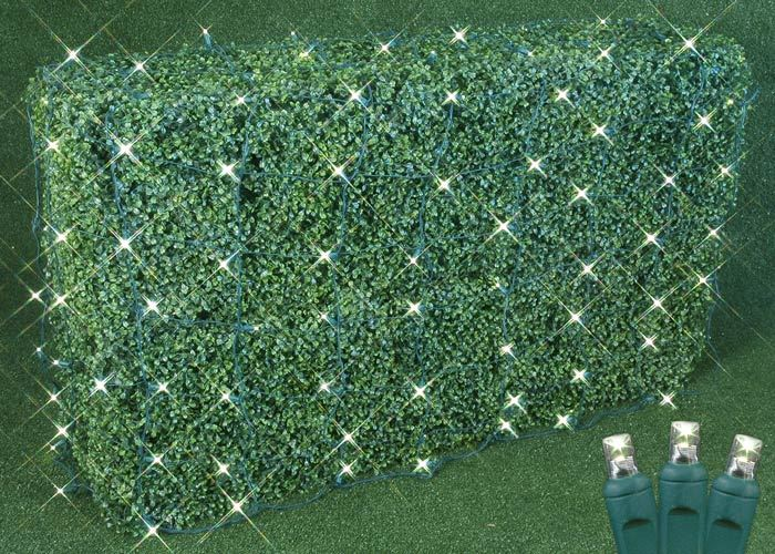 Picture of Warm White LED Net Lights 4x6 Green Wire