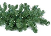 Picture for category Christmas Garland and Wreaths
