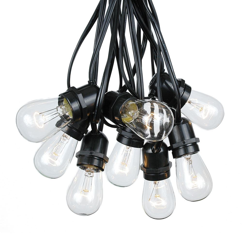 Picture of 25 Clear S14 Commercial Grade Light String Set on 37.5' of Black Wire