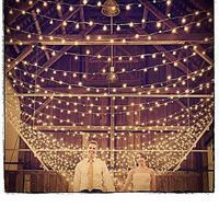 Picture for category Wedding String Lights