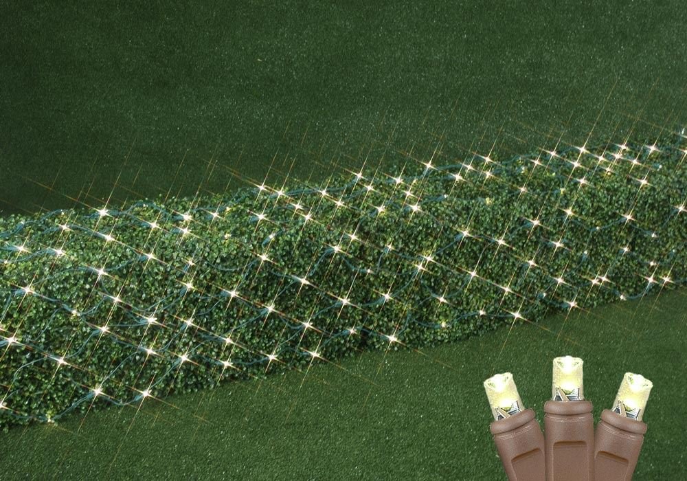 Picture of Warm White LED Net Lights 2x10 Brown Wire