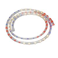 Picture for category Chasing Custom Rope Light Kits 3-wire