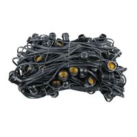 Picture for category Bulk 330' Comercial Grade String Lights