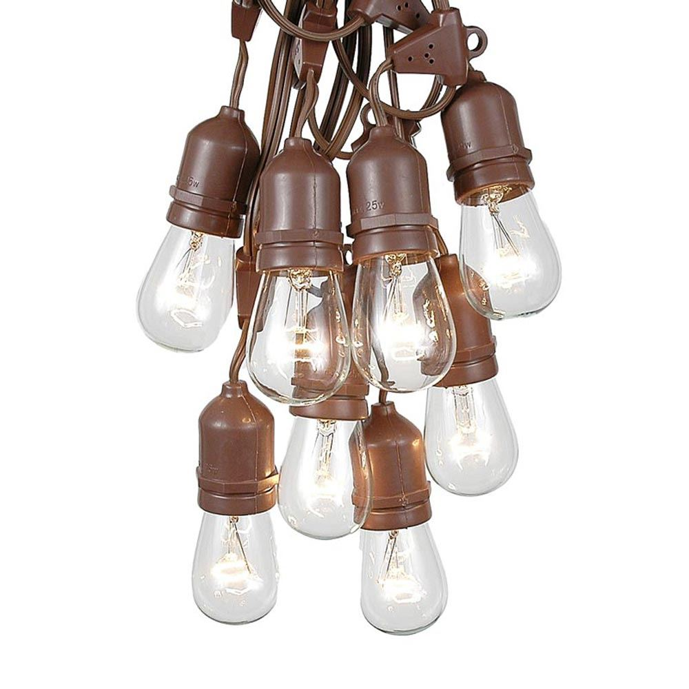 Picture of 50 Clear S14 Commercial Grade Suspended Light String Set on 100' of Brown Wire
