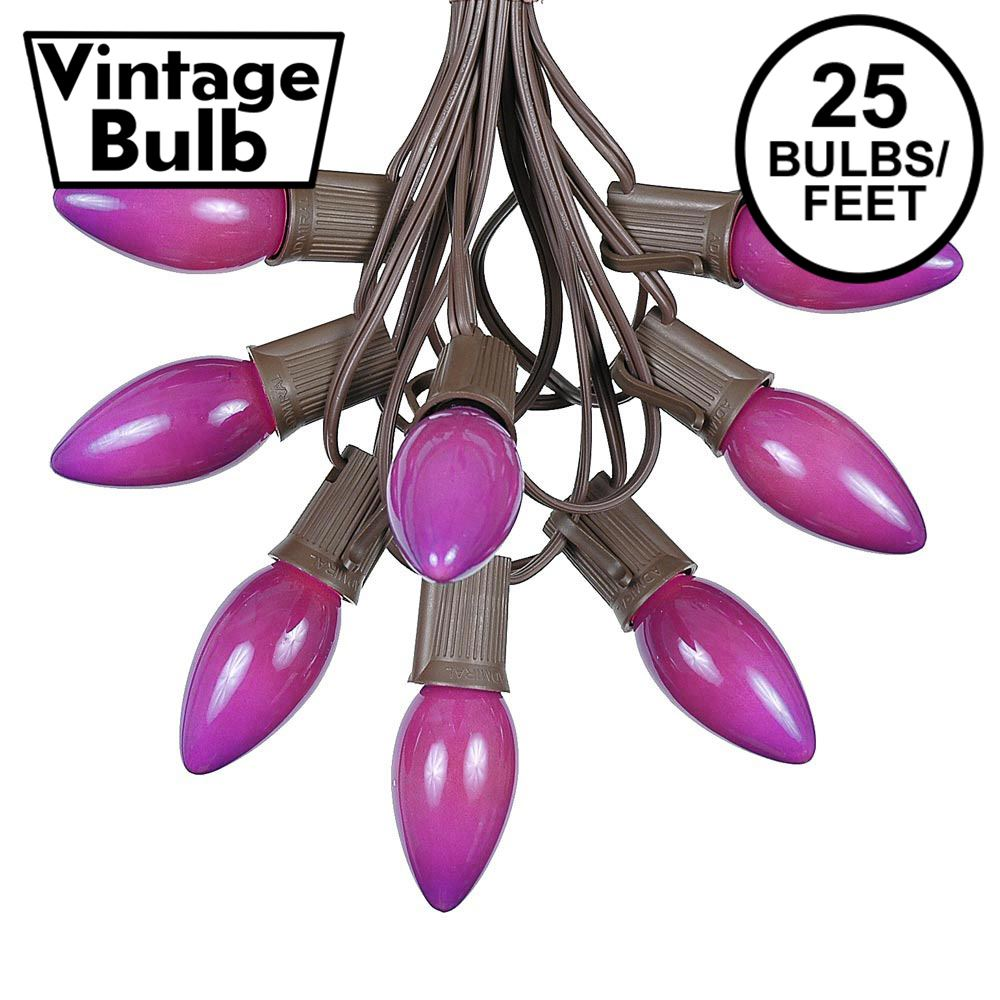 Picture of C9 25 Light String Set with Ceramic Purple Bulbs on Brown Wire