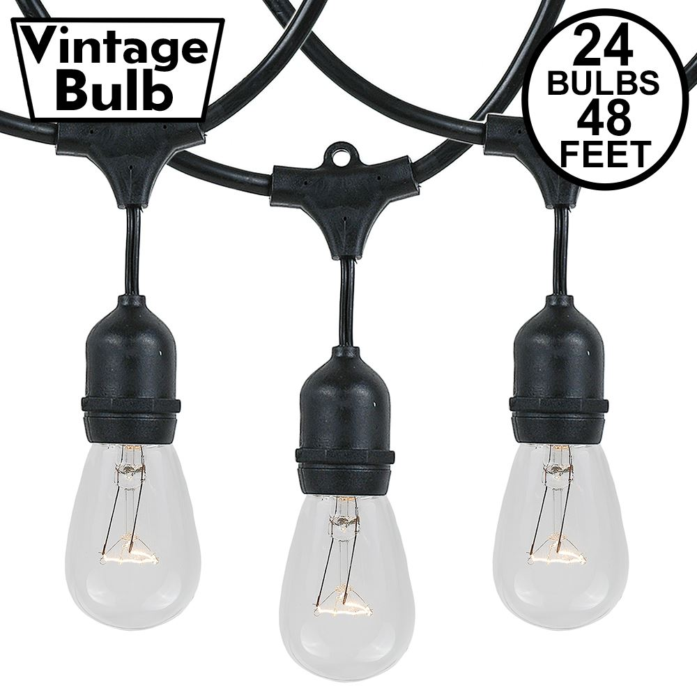Picture of 24 Clear S14 Commercial Grade Suspended Light String Set on 48' of Black Wire