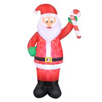 Picture for category Christmas Inflatables