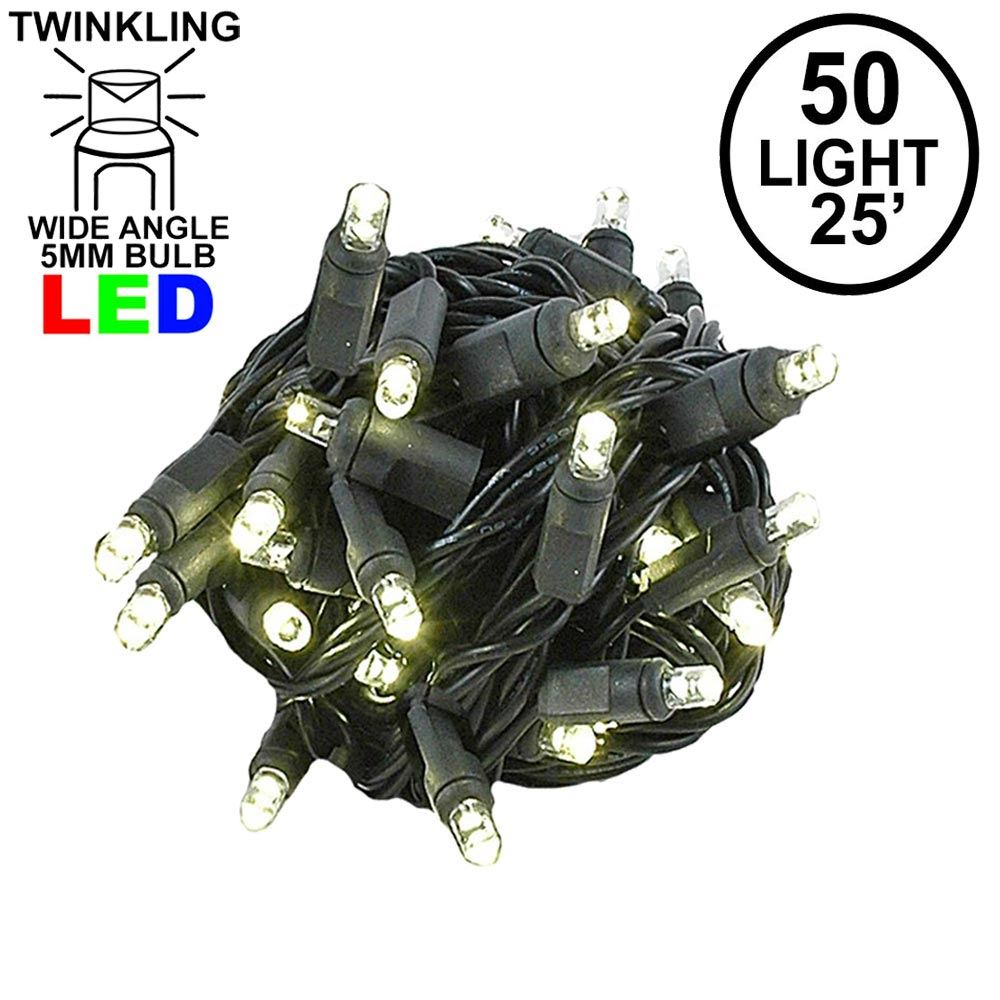 Picture of Twinkle LED Christmas Lights 50 LED Warm White 25' Black Wire
